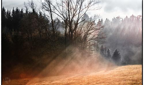 Landschaft im Schwäbischen Wald bei Welzheim
