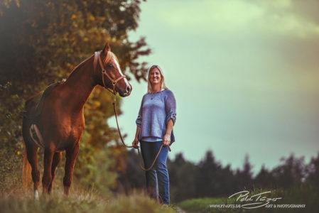 pt-arts-fotografie-tierfotografie-pferde-araber-herbstlook-sonnenuntergang