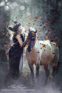 pt-arts-fotografie-tierfotografie-pferde-dülmener-wildpferd-fairytail-winter 01