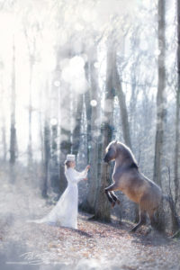 pt-arts-fotografie-tierfotografie-pferde-dülmener-wildpferd-fairytail-winter 02