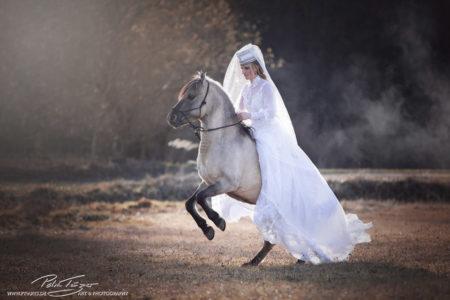 pt-arts-fotografie-tierfotografie-pferde-dülmener-wildpferd-fairytail-winter 03