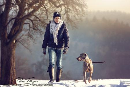 pt-arts-petra-taenzer-fotografie-tierfotografie-hunde-winter-weimaraner 01