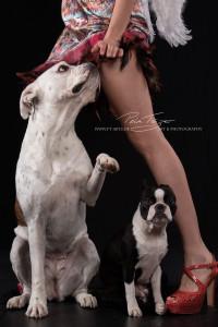 Bulldogge und Mädchen