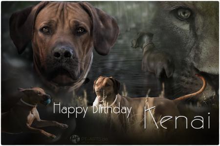 Kenai-Happy-Birthday-2web