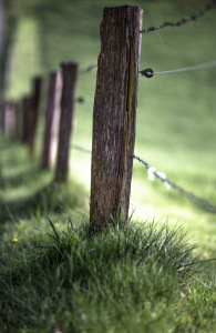 Landschaftsfotografie-Schwäbischer-Wald7