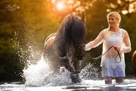 Friese im Wasser Mädchen Sonnenuntergang Romantik