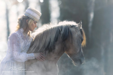 pt-arts-fotografie-tierfotografie-pferde-dülmener-wildpferd-fairytail-winter 05
